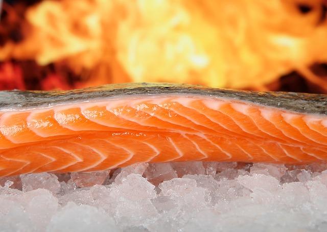salmão cru no gelo