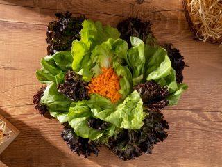 deficiências nutricionais para veganos