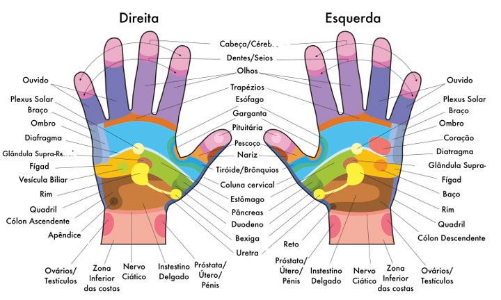 mapa de reflexologia das mãos