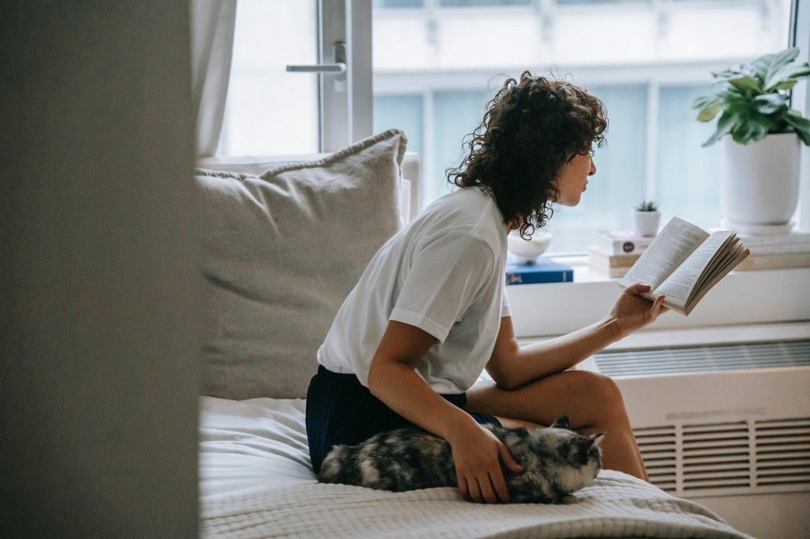 como relaxar a mente com o seu pet